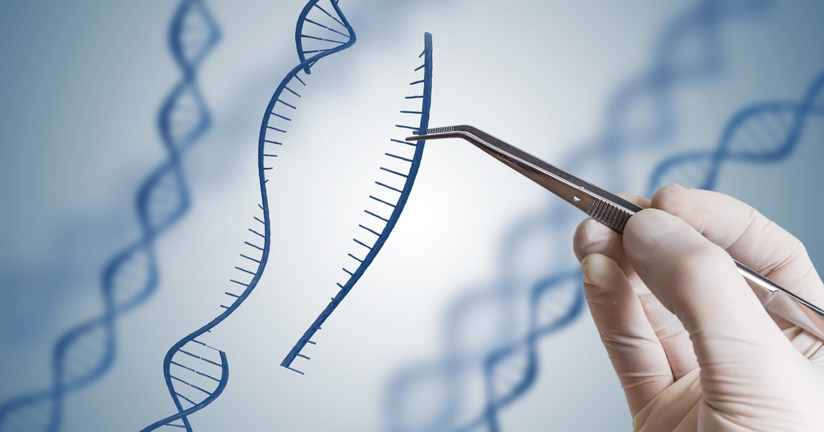 genetic engineering and infertility Genetic engineering, also called genetic modification or genetic manipulation, is the direct manipulation of an organism's genes using biotechnology it is a set of technologies used to change the genetic makeup of cells, including the transfer of genes within and across species boundaries to produce improved or novel organisms.