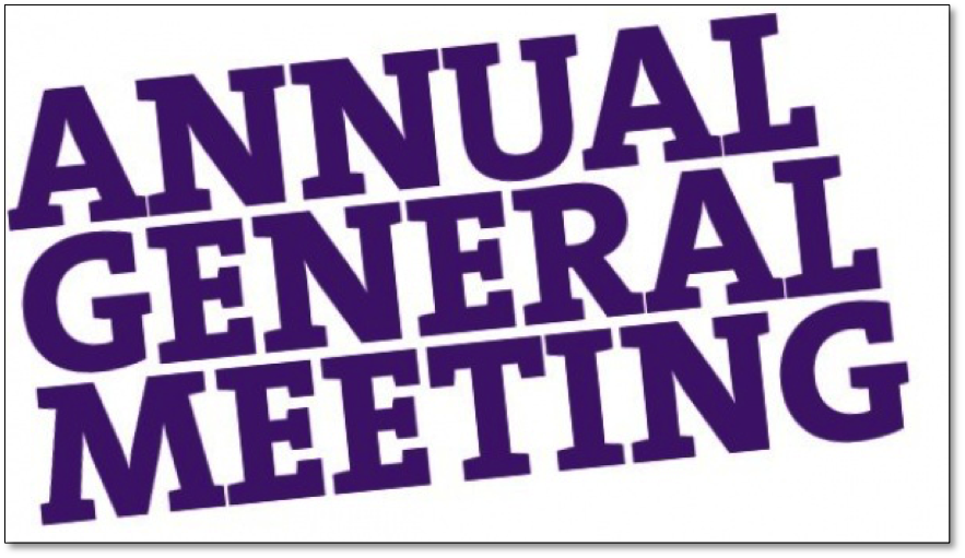 Annual General Meeting: Why Should You Attend?