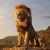 lionking avatar