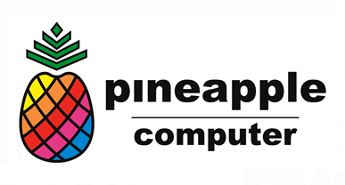 PINEAPP | PINEAPPLE RESOURCES BERHAD