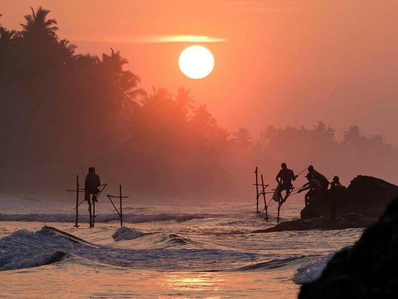 The Ultimate Sri Lanka 22 days Tour (21 N / 22 D)