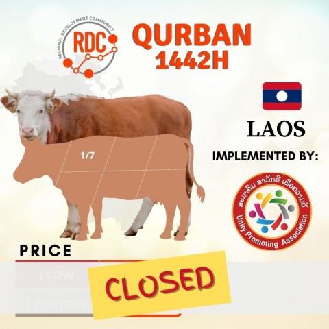 RDCB QURBAN 1442H LAOS - COW