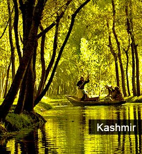 kashmir holiday,tour package and kashmir Honeymoon package