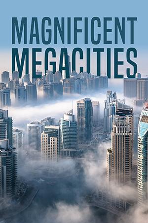 Magnificent Megacitites