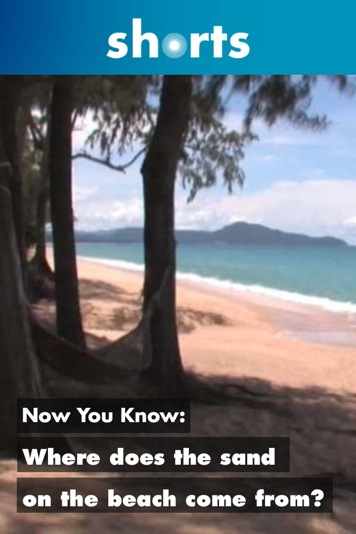 Now You Know: Where does the sand on the beach come from?