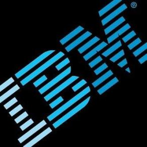 IBM Business Services