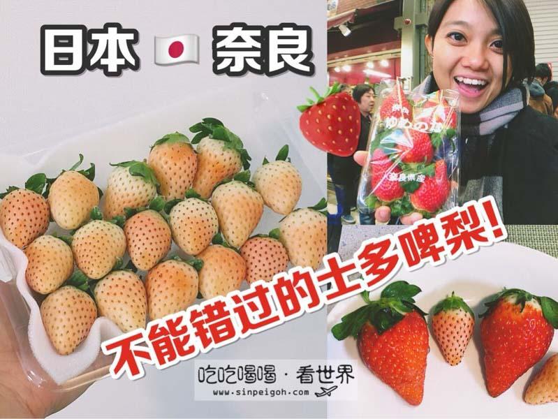 吃吃喝喝看世界 日本奈良草莓