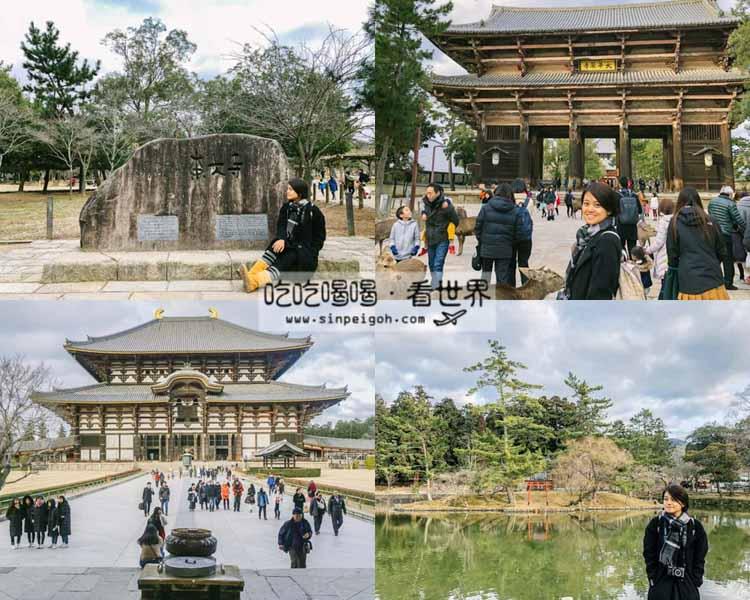 吃吃喝喝看世界 奈良東大寺