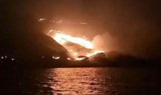 Kebakaran Hutan Gili Lawa, Polisi Data Komodo dan Manusia