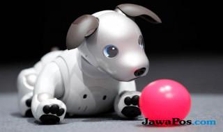 robot anjing aibo