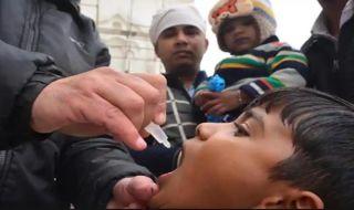 penyakit polio, hari polio sedunia, penyebab polio,