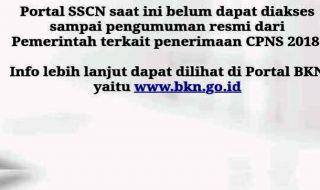 Portal SSCN