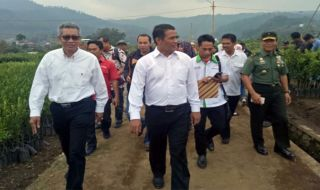 Menteri Pertanian Andi Amran Sulaeman