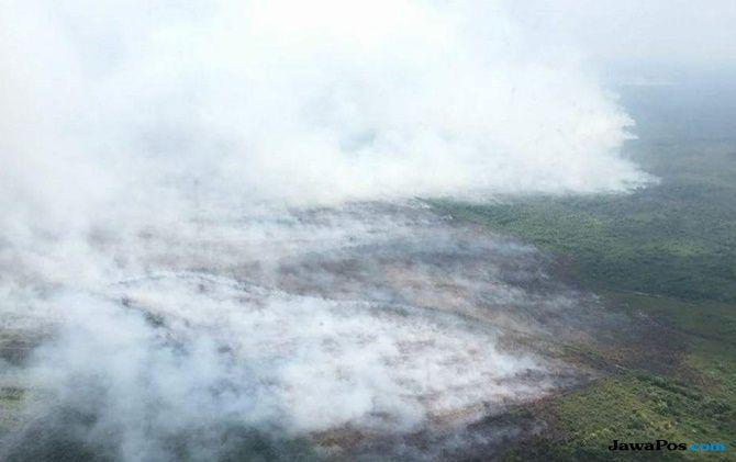 5.376 Hektare Lahan di Riau Hangus Dilalap Si Jago Merah