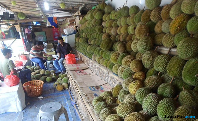 Musim durian dan manggis di Bandarlampung