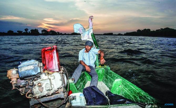 Petambak mengendarai perahu mesin di muara Kali Porong di Desa Kupang, Kecamatan Jabon