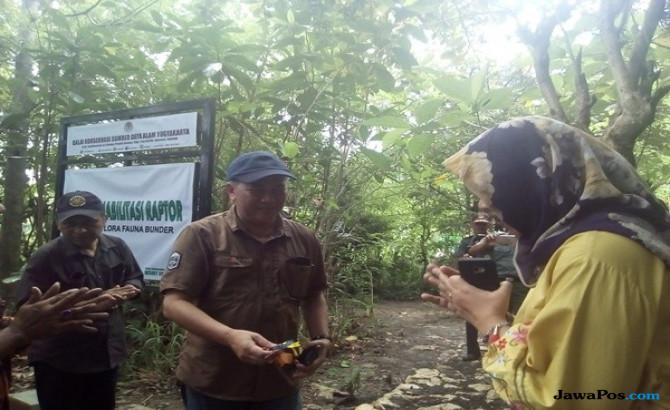 Selamatkan Orangutan, Ini yang Dilakukan Dirjen Konservasi