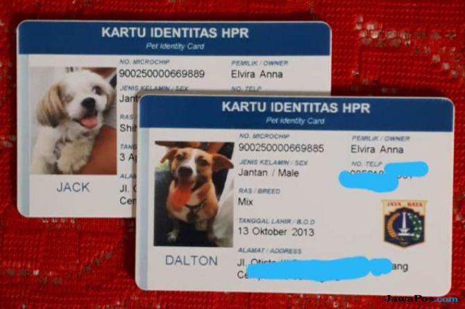314 Anjing di Jakarta Sudah Miliki KTP