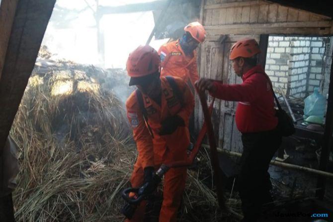 Bakar Sampah Kotoran Sapi, Rumah di Tegal Rejo Ikut Dilahap Api