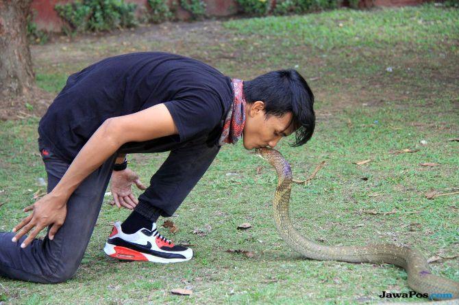 Rizki Ahmad dan ular peliharaannya
