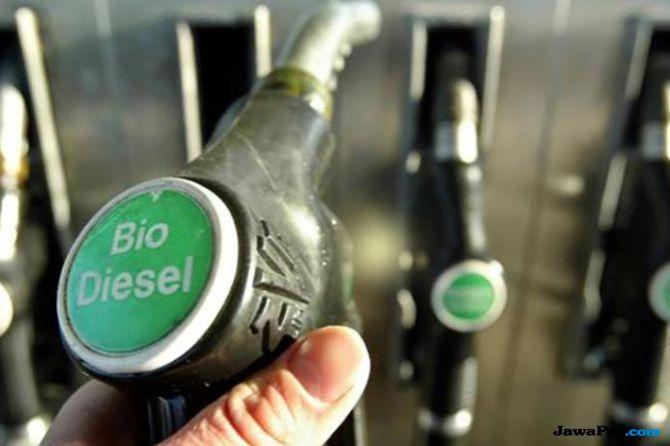 Besok Jokowi Tandatangani Revisi Aturan Biodiesel 20