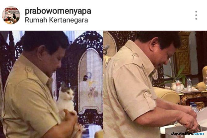 Dicemooh Jenderal Kardus, Prabowo Asik dengan Kucing Kesayangannya