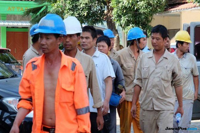 tka ilegal, tenaga kerja asing, tka ilegal morowali