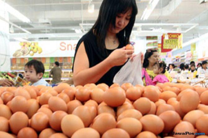 Harga Telur di Bojonegoro Melangit, Sentuh Rp 28 Ribu