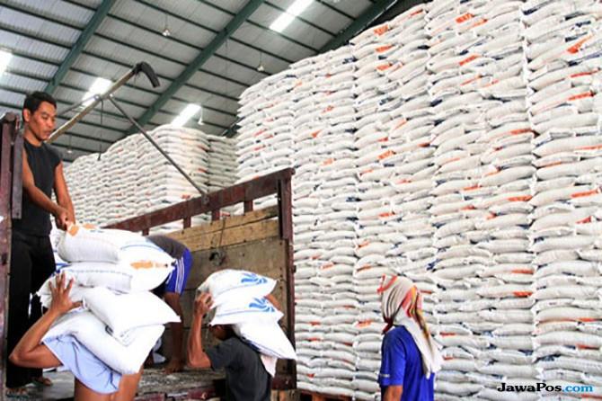 Impor Beras 500.000 Ton, Menko Darmin: Harga Beras Medium Masih Tinggi