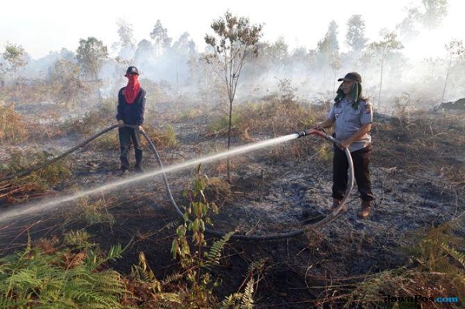 Kebakaran Hutan di Tobasa, Api Tak Kunjung Padam