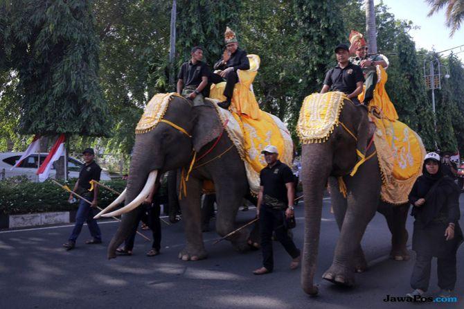 Keliling Kota Tunggangi Gajah Warnai Pekan Kebudayaan Aceh