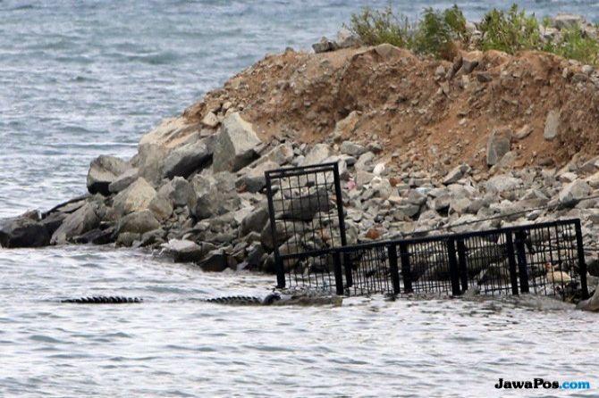 Kopaska Buru Buaya Yang Muncul di Dermaga Pondok Dayung