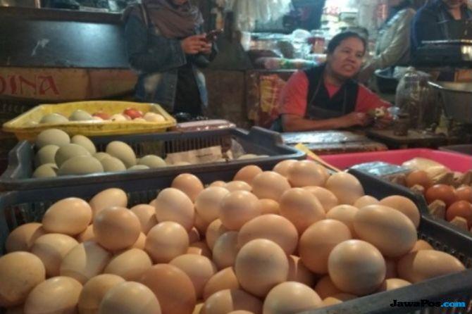 Lonjakan Harga Telur Ayam Ras Pemicu Inflasi Tertinggi