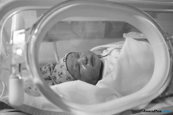 Mengenal Fasilitas Vital Ruang NICU PICU yang Diperlukan Bayi Debora