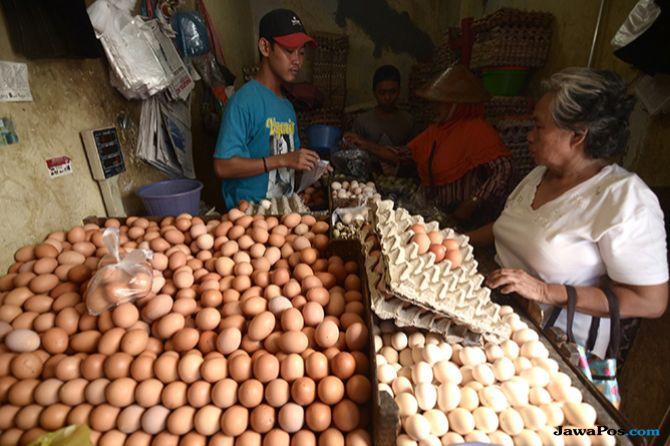 Menguatnya Dolar Bikin Harga Telur di Pasar Naik, Kok Bisa?