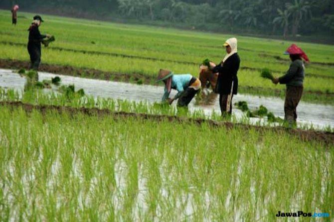 Moeldoko Beberkan Banyaknya Masalah Petani di Indonesia