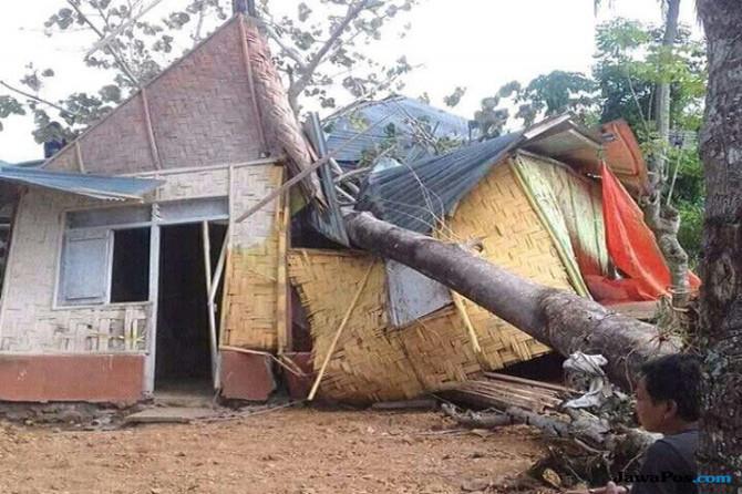 Pohon Tumbang Timpa Rumah Keluarga Miskin