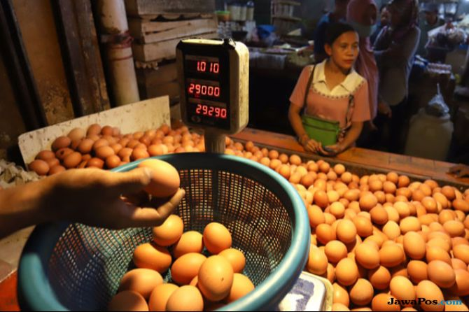 Selain Dolar, Ini Penyebab Tingginya Harga Telur Ayam di Pasar