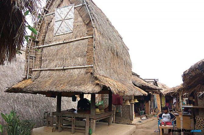 Suku Sasak Asli Gotong Royong Bangun Lombok