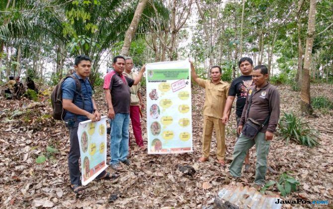 BBKSDA Riau Pasang Kamera Pengintai Amati Aktivitas Harimau di Kampar