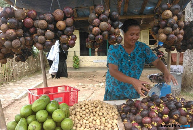 Di Sini Tempatnya  Buah Durian Dan Manggis Dengan Harga Miring