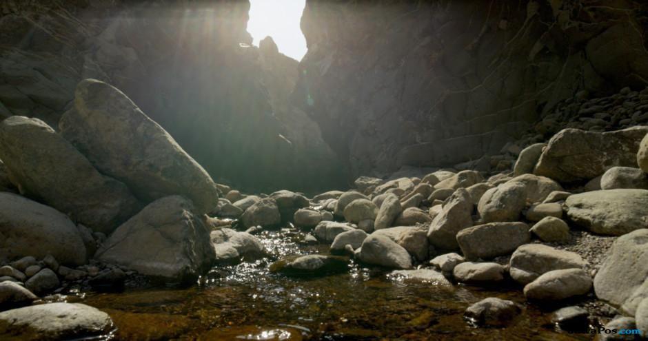 Indahnya Wadi Wurayah, Cagar Biosfer Pertama di Uni Emirat Arab