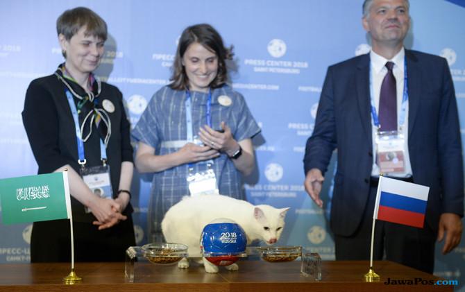 Timnas Rusia, Timnas Arab Saudi, Piala Dunia 2018, Achilles Kucing Peramal