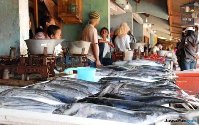 Kebijakan Cantrang Ala Menteri Susi Bikin Pabrik Pengolahan Ikan Mati