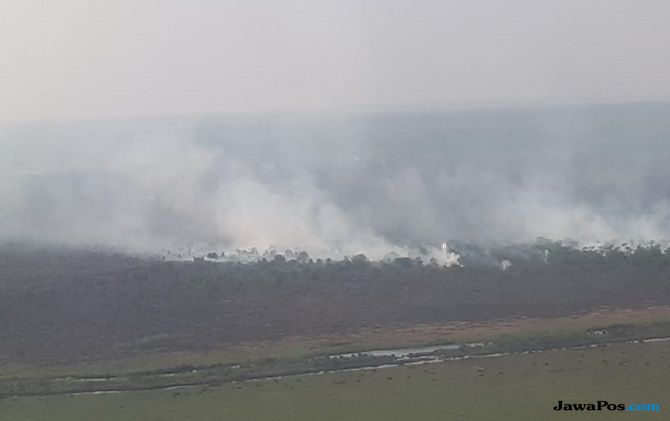 Luasan Lahan Terbakar di Sumsel Mencapai 482 Hektar
