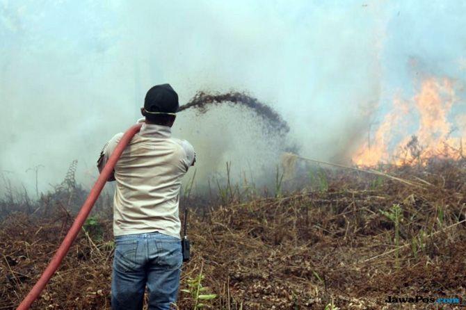 Peringatan BMKG: Kualitas Udara di Kalbar Masuk Kategori Berbahaya