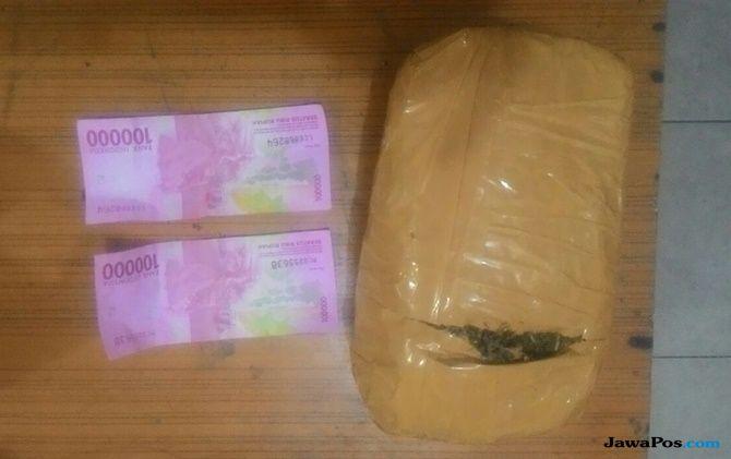 Warga Binaan Lapas Bengkalis Simpan 400 Gram Ganja Kering
