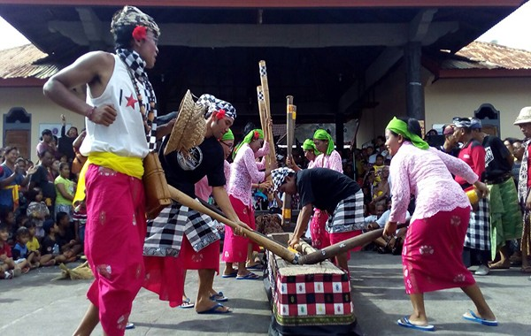 tradisi leluhur, tradisi kuno, tradisi ngoncang, tradisi mejuk-jukan, pemkab buleleng