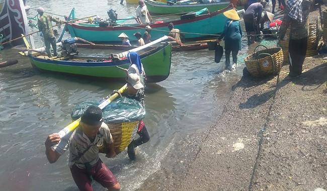 musim panen ikan, harga ikan, ppn pengembangen, nelayan jembrana