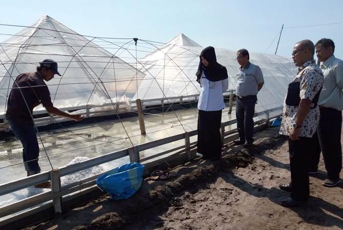 inovasi daerah, bappeda, kabupaten probolinggo